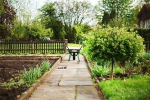 Schubkarre auf einem Steinplattenweg im Kleingarten mit viel Grün