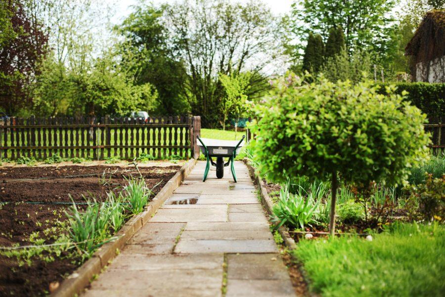 Schubkarre auf Plattenweg zwischen Beeten eines Kleingartens